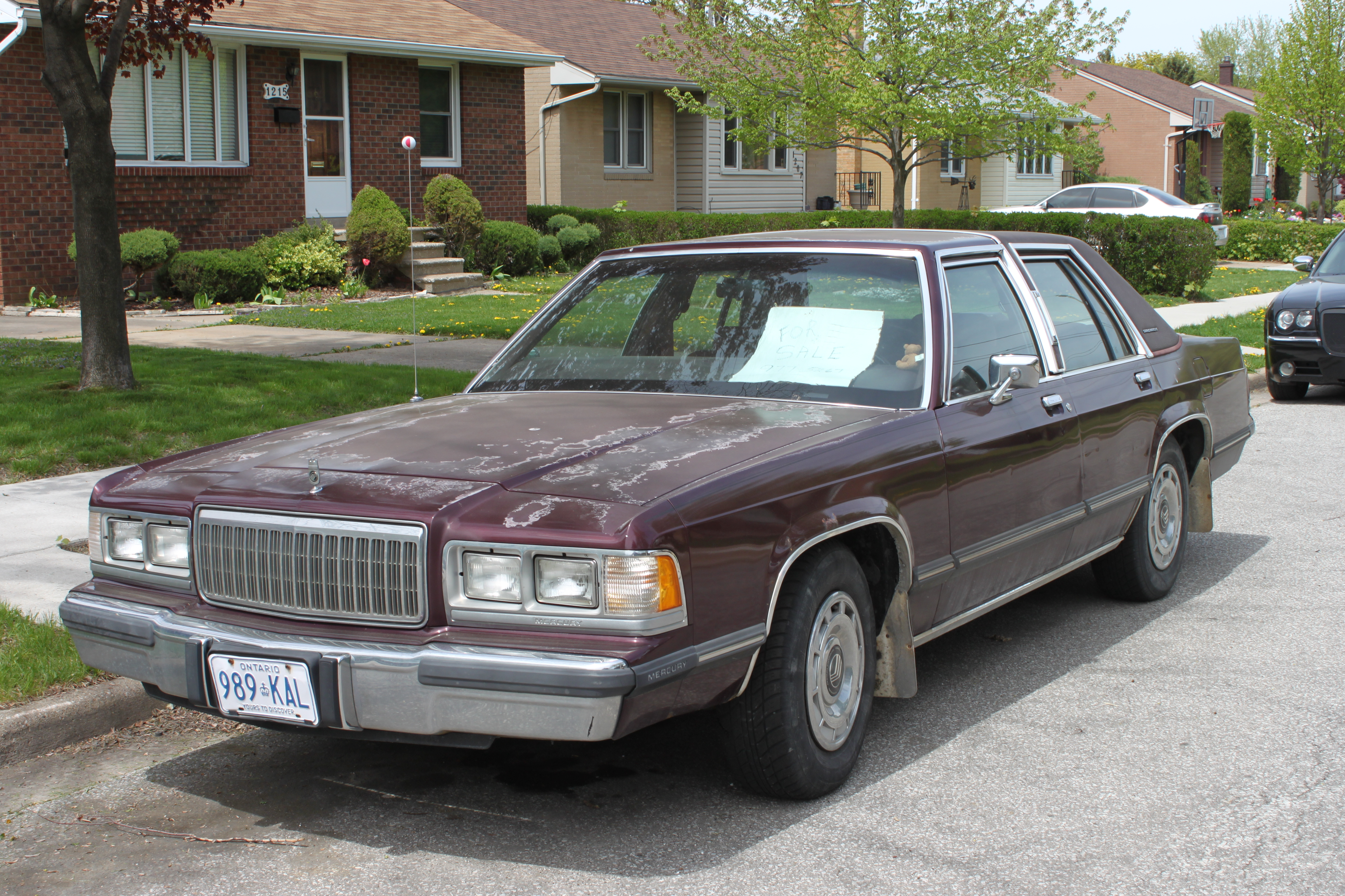 Curbside classic 1989 mercury grand marquis ls panthers run in the family