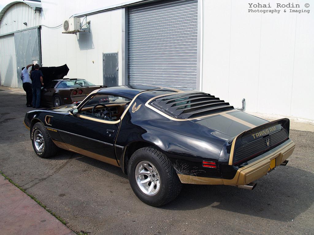 Curbside Classic 1979 Pontiac Firebird Trans Am Not