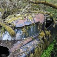 (first posted 4/15/2011)  There are no less than 220 photos by Michal Meduna in this amazing gallery of junked cars being reclaimed by nature. Stephanie and I got totally […]