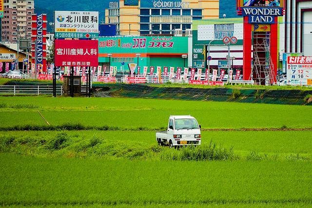 Suzuki Carry field
