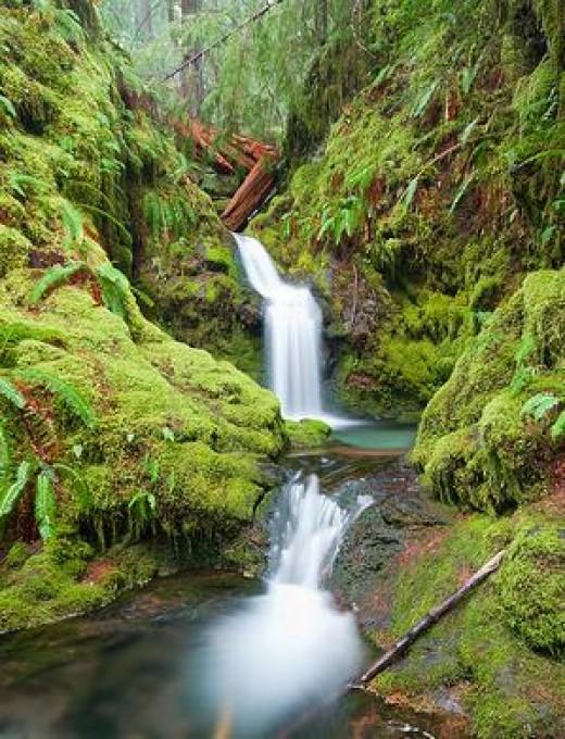 Daming Xu French Creek