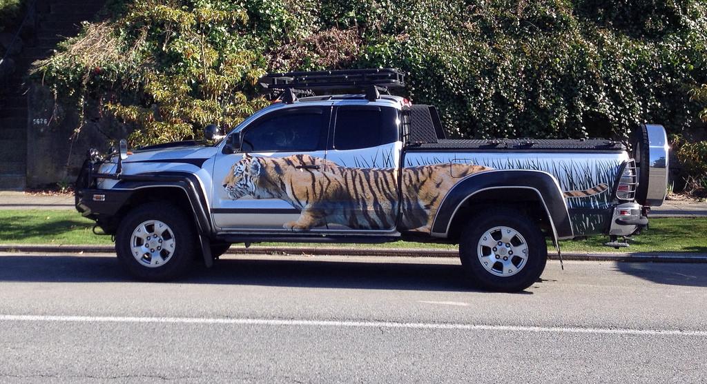 Toyota Tacoma custom side