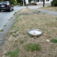 This was once a quite common sight on the sides of our roads and highways, but not so much anymore. So when I saw this genuine metal hubcap laying near […]