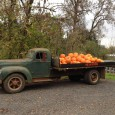 This old International truck from the forties isn't a static display truck at the entrance to this farm; it actually hauled the pumpkins from the field, and I've seen (and […]